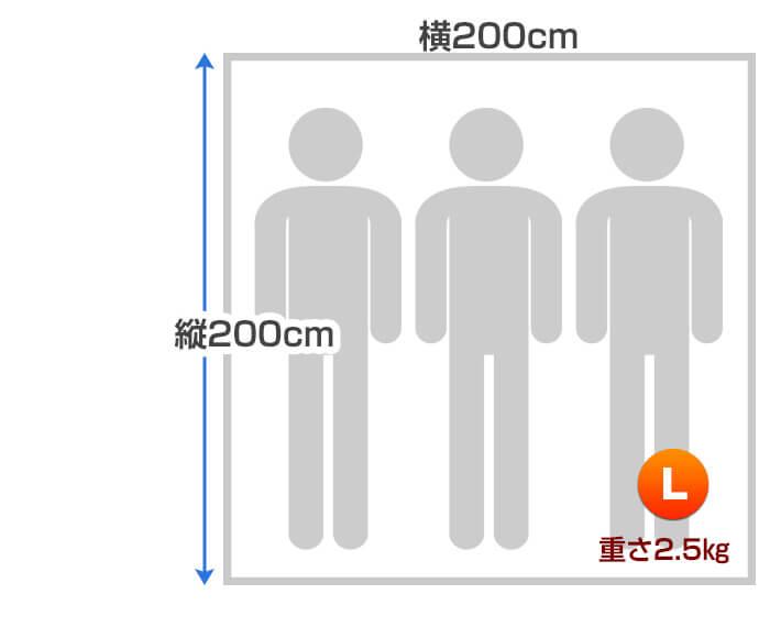 ビーチのサイズ寸法2