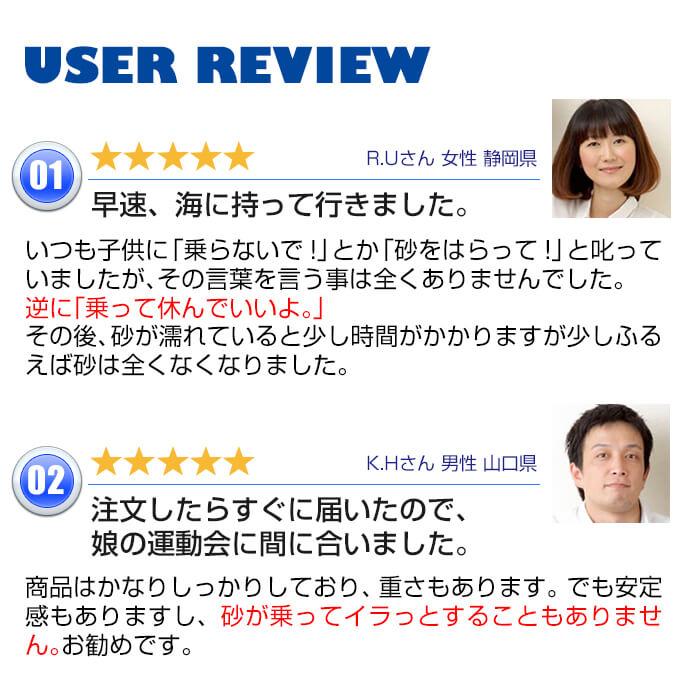 ビーチのユーザーレビュー1